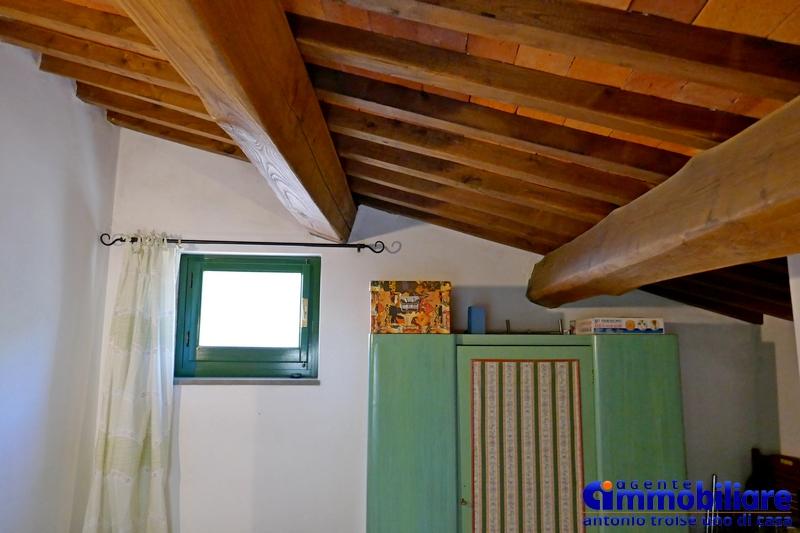 pistoia-vendita-podere-terreno-annesso-rustico-bosco-uliveto-221
