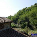 pistoia-vendita-podere-terreno-annesso-rustico-bosco-uliveto-23