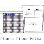 pistoia-vendita-podere-terreno-annesso-rustico-bosco-uliveto-planimetria-5