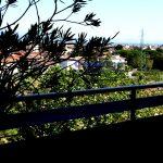 pistoia vendita attico ultimo piano terrazza panoramico 15