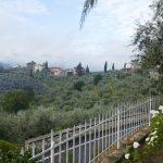 vendesi pistoia quarrata colonica panoramica giardino 15