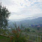 vendesi pistoia quarrata colonica panoramica giardino 16