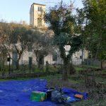 pistoia viale petrocchi terratetto d'epoca con grande giardino 2
