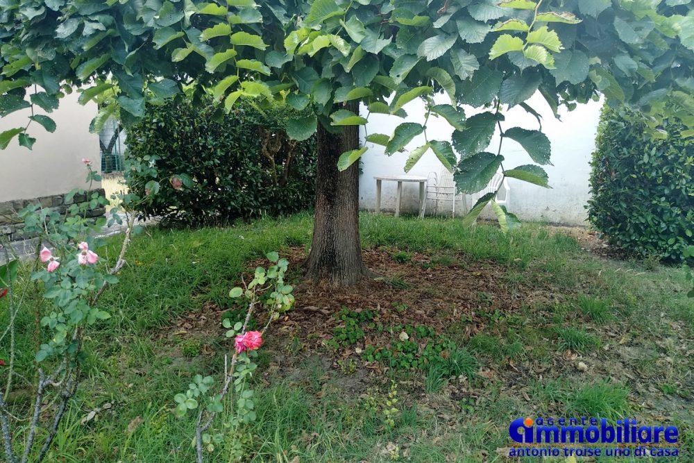 pistoia vendesi casa indipendente con giardino 10