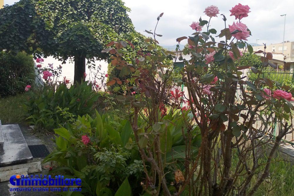 pistoia vendesi casa indipendente con giardino 14