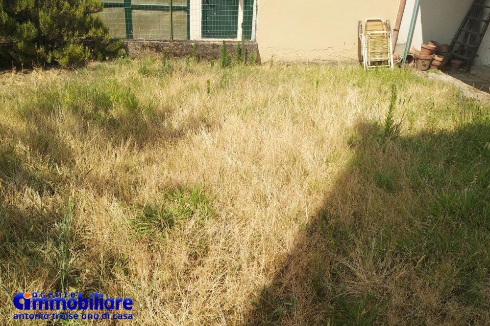 pistoia vendesi casa indipendente con giardino 4